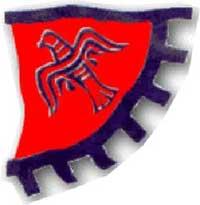 Raven banner flag
